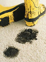 1203_home_carpet_dirt.jpg